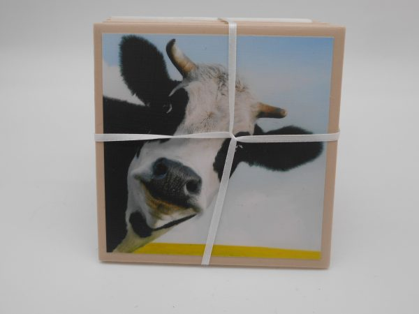 coaster-cow-cms-treasures-under-sugar-loaf-winona-minnesota-antiques-collectibles-crafts