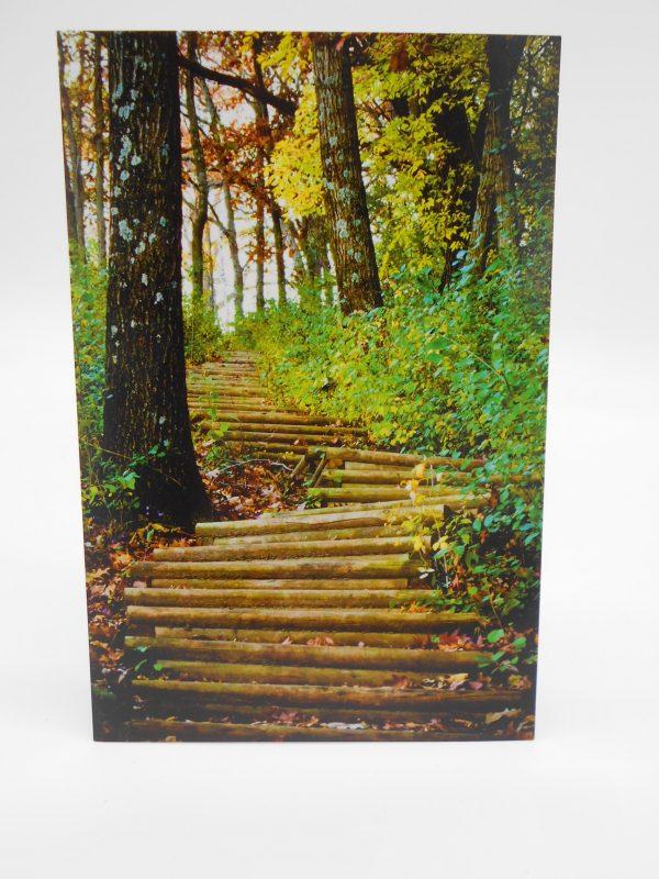 winona-postcard-garvin-heights-dj-treasures-under-sugar-loaf-winona-minnesota-antiques-collectibles-crafts