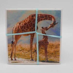 coaster-giraffes-cms-treasures-under-sugar-loaf-winona-minnesota-antiques-collectibles-crafts