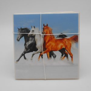 coaster-horses-cms-treasures-under-sugar-loaf-winona-minnesota-antiques-collectibles-crafts
