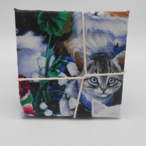 coaster-kittens-cms-treasures-under-sugar-loaf-winona-minnesota-antiques-collectibles-crafts