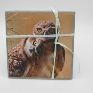 coaster-owls-cms-treasures-under-sugar-loaf-winona-minnesota-antiques-collectibles-crafts