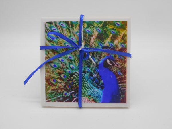coaster-peacock-cms-treasures-under-sugar-loaf-winona-minnesota-antiques-collectibles-crafts