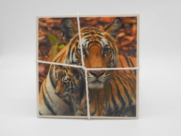 coaster-tigers-cms-treasures-under-sugar-loaf-winona-minnesota-antiques-collectibles-crafts