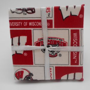 coaster-wisconsin-badgers-cms-treasures-under-sugar-loaf-winona-minnesota-antiques-collectibles-crafts